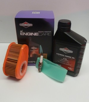 Briggs and Stratton Engine Service Kit 992234